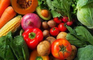 免疫力の維持には各種の植物栄養素も重要な役割を果たしています