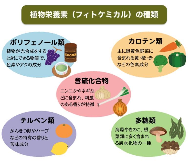 植物栄養素(フィトケミカル)とは、紫外線や有害物質、害虫などの害から自らを守るために、植物が作り出した色素や香り、アク、辛味などの成分であり、大きく分類すると「ポリフェノール、含硫化合物、カロテノイド、テルペン類、多糖類」の5種類に分けられる。