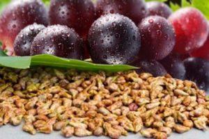 ブドウ種子エキスにはポリフェノールの中でも特に強い力をもつといわれている「プロアントシアニジン」が豊富に含まれています