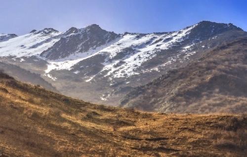 冬虫夏草は、産地が中国やチベットの高山に限られます