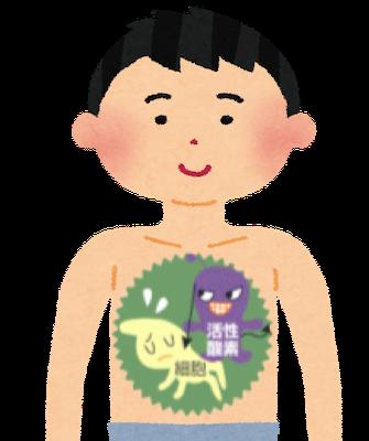 活性酸素が必要以上に増えてしまうと、その強い酸化力で正常な細胞を侵食し、過酸化脂質を生み出して、カラダの内外にさまざまな悪影響を及ぼしてしまう