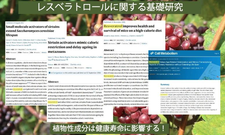 ニュースキンジャパン公式資料「レスベラトロールに関する基礎研究」