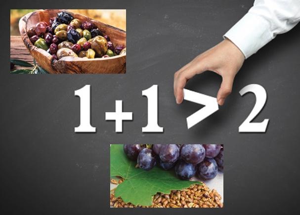 ライフパック タブレットに配合されている「オリーブ果実抽出物」と「ブドウ種子エキス」のコラボレーションは、栄養学的に非常に優れた相乗効果を発揮します