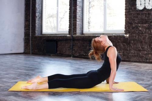 栄養、運動、休養が健康を支えます